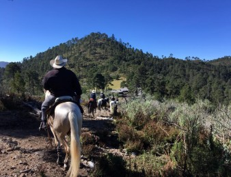 Ajusco Volcanoes and Wilderness Adventure
